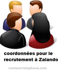 contact recrutement Zalando