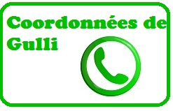 Contacter Gulli