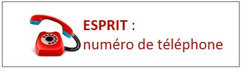 Numéro d'Esprit
