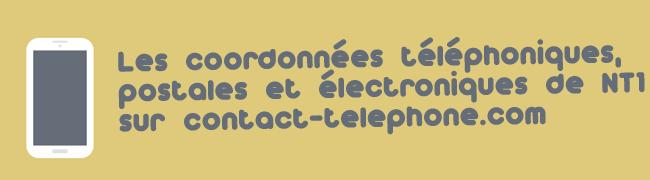 NT1 Telephone