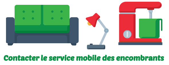 service mobile encombrants lille