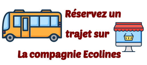 Ecolines transports