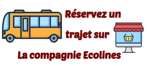 Ecolines transports