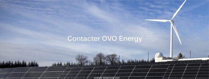 OVO Energy Contact
